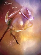 Sparkling Rose Photo Posters - Sparkling Rose Thank You Poster by Anne Macdonald