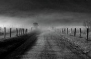 Douglas Stucky Metal Prints - Sparks Lane in Black and White Metal Print by Douglas Stucky