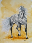 Arabian Horse Paintings - Spartacus by Janina  Suuronen