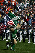 Spartans Prints - Sparty at Football Game Print by John McGraw
