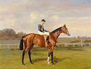 Horse Racing Painting Prints - Spearmint Winner of the 1906 Derby Print by Emil Adam