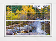 Fall Photos Framed Prints - Special Place in the Woods Large White Picture Window View Framed Print by James Bo Insogna
