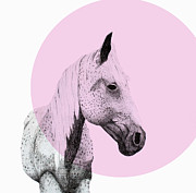 Mod Drawings - Speckled Horse by Morgan Kendall