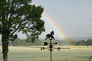 Weathervane Prints - Spectacular Rainbow Print by Lisa Browning