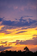 Amazing Sunset Metal Prints - Spectacular sunset Metal Print by Elena Elisseeva