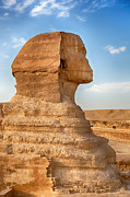 Egyptian Photos - Sphinx profile by Jane Rix