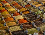 Allen Sheffield - Spices at Marche Provencal