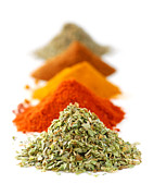 White Background Posters - Spices Poster by Elena Elisseeva