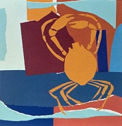 Seashell Painting Framed Prints - Spider Crab Framed Print by John Wallington