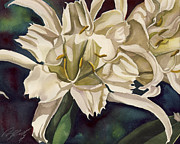 Alfred Ng - spider lily watercolor