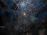 Spiders Mixed Media - Spiders web 158 by Kenneth Albury