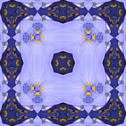 Mandala Photos - Spiderwort by Michele Kaiser