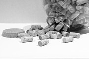 John Debar Prints - Spill the Corks Print by John Debar