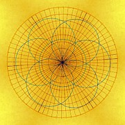 Light Yellow Drawings - Spinning Around by Tom Druin