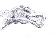 Dinosaur Drawings Originals - Spinosaurus by Bill Flowers