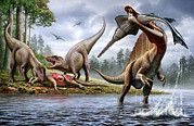 The Pain Posters - Spinosaurus Hunting An Onchopristis Poster by Mohamad Haghani
