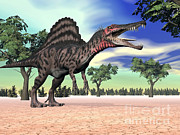 Three Dimensional Posters - Spinosaurus Standing In The Desert Poster by Elena Duvernay