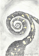 Snakes Drawings Prints - Spiral Print by Angela Pelfrey