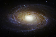 Space Art - Spiral Galaxy M81 by The  Vault - Jennifer Rondinelli Reilly