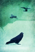 Ravens Prints - Spirit Bird Print by Priska Wettstein