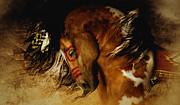 Shanina Conway - Spirit Horse