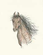 Pony Drawings Originals - Spirit by Michael Shegrud