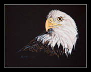 Greeting Card Pastels Originals - Spirit of Freedom Bald Eagle by Mary Dove