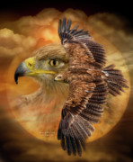 Bird Of Prey Greeting Card Framed Prints - Spirit Of The Wind Framed Print by Carol Cavalaris