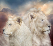 Lions Mixed Media Prints - Spirits Of Light Print by Carol Cavalaris