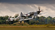 Ww2 Photo Prints - Spitfire Parade Print by Alexis Birkill