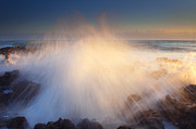 Coral Cove Photos - Splash by Mike  Dawson