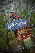 Magic Pyrography Prints - Splash Mountain Sign Print by AK Photography