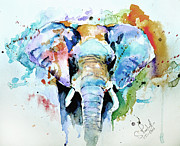 Elephant Prints - Splash of colour Print by Steven Ponsford