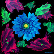 Christelle Burger - Splash of Gerbera