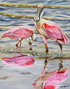 Spoonbill Paintings - Splash of Pink by Phyllis Beiser