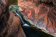 Red Cliffs Prints - Splendor On Quail Creek Print by Bob Christopher