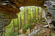 North Fork Framed Prints - Split Bow Arch - D005237 Framed Print by Daniel Dempster