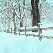 Split Rail Fence Photo Prints - Split Rail Blues Print by John Stephens