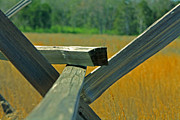 Split Rail Fence Framed Prints - Split Rail Color Framed Print by Wesley Kitchens