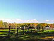 Split Rail Fence Posters - Split Rail Fence Poster by Karen Raley