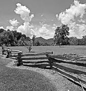 Split Rail Fence Photos - Split Rails by Barbara Blaisdell