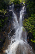 Cascade Mountains Prints - Split Top Falls Print by Mike  Dawson