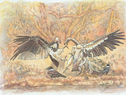 Vulture Drawings Metal Prints - Spoils Metal Print by Lynn  De Lacey