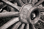 Wheel Metal Prints - Spokes and Axle Metal Print by Olivier Le Queinec