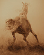 Wild Horse Drawings - Spooked by Jani Freimann