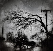 Ritchie Metal Prints - Spooky Tree Metal Print by Toni Martsoukos