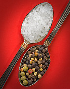 Interior Still Life Posters - Spoonfuls of Salt and Pepper Poster by Susan Candelario