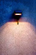 Spot Of Warming Light Print by Alexander Senin
