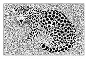 Jaguars Digital Art Framed Prints - Spots Over Jaguar Black and White Illustration Artwork Framed Print by Michel Godts