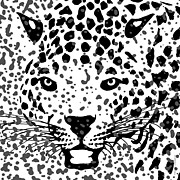 Jaguars Digital Art Framed Prints - Spots Over Jaguar Portrait Illustration Artwork Framed Print by Michel Godts